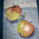 Pomme d'Eva